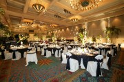 White Solid Chair Covers with Black Imperial Stripe Sashes ~ $8.50+ each