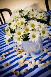 Collecting Daisies <br /> $45+